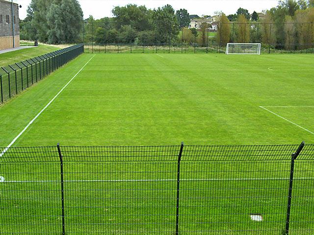 640×480 Serv Natural Grass Sports