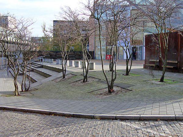 640×480 Serv Urban Planting